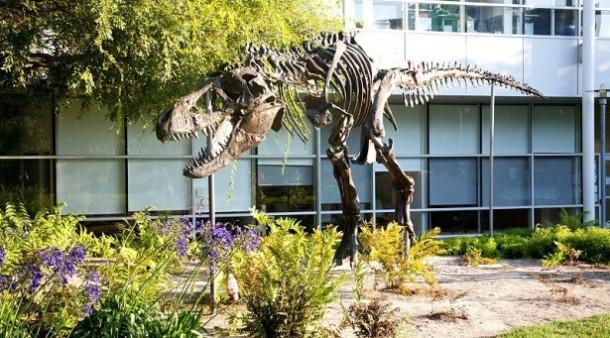 googleplex-t-rex