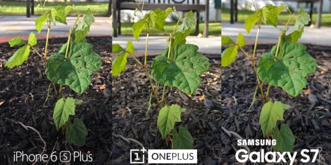 OnePlus 3 vs Galaxy S7 vs iPhone 6s Plus kamera teszt